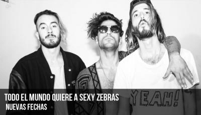 todo-el-mundo-quiere-a-sexy-zebras