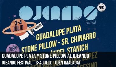 guadalupe-plata-y-stone-pillow-al-ojeando